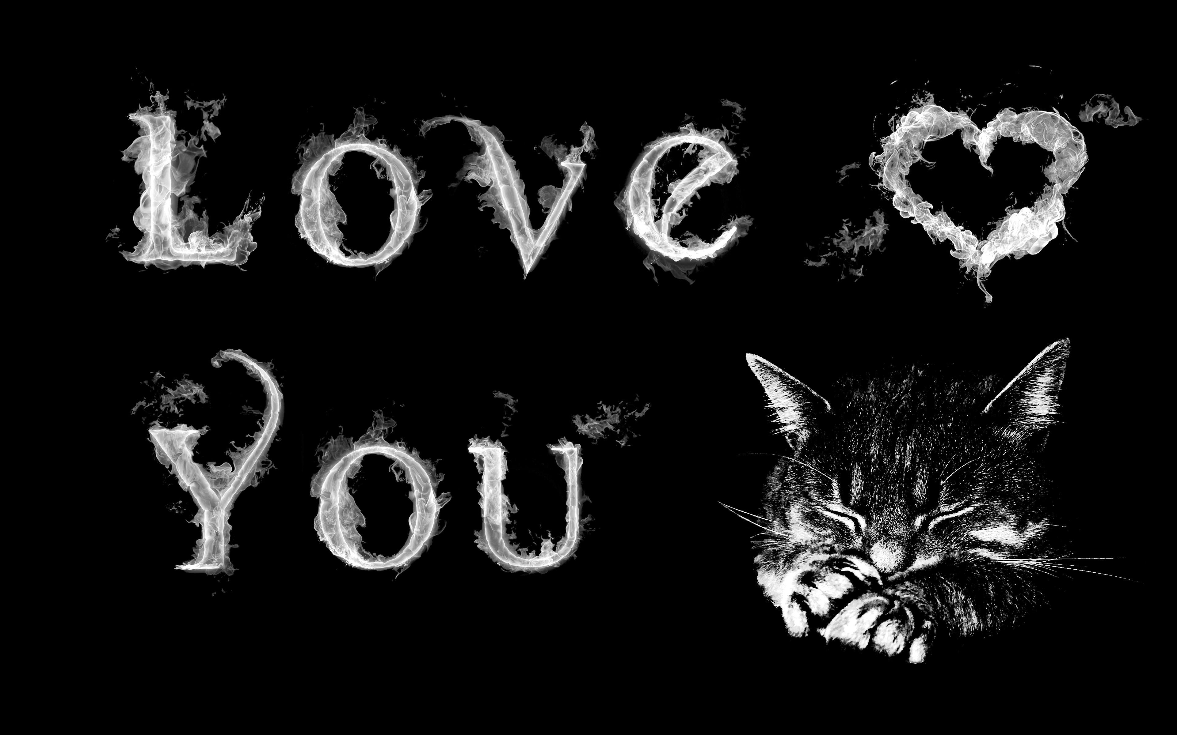 Téléchargement gratuit de la chatte noire monde orgie