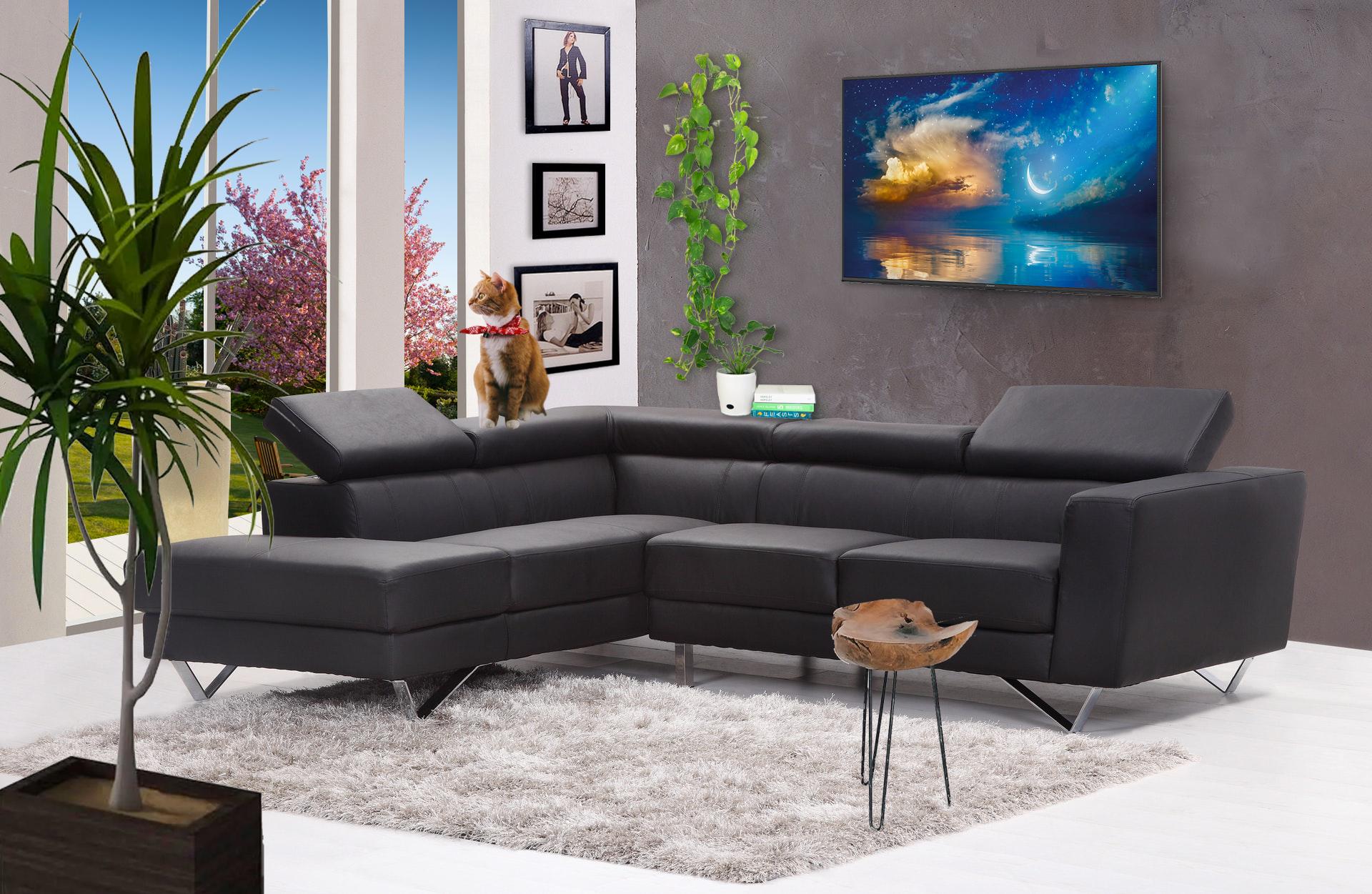 Arrière plan virtuel pour visioconférence : Living Room
